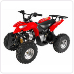 ALPINE ATV RENEGADE 110CC